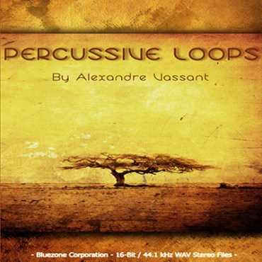 Download Percussive Loops Sample Pack