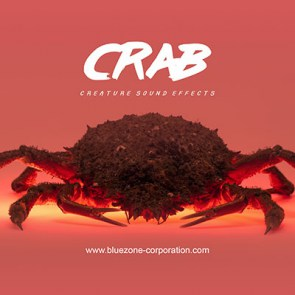 155 crab sound effects: Walking, clicking, digging and eating sounds, claws, carapace and shell textures