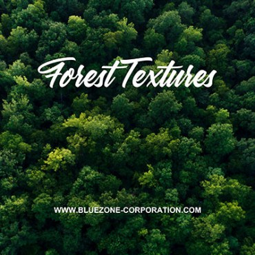 307 Forest and wood sounds: Breaking, creaking, cracking, handling and falling sounds, leaf crunches, rustling foliage, wood impacts and hit sound effects